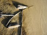 Пляж Delisha