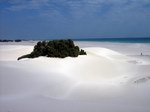 Дюны на южном берегу Сокотры