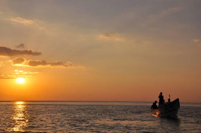 остров Сокотра, автор Татьяна Жукова