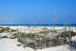 Пляж в Аомак, Сокотра