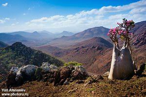 Панорамы на плато Mumi