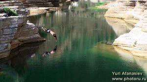 Самый  большой пресноводный бассейн на острове Сокотра