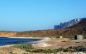 Rush camping, Socotra, Yemen