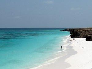 остров Дарса, Сокотра