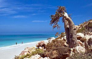 Suab, Socotra, Yemen