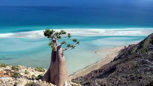 Detwah lagoon, Socotra island