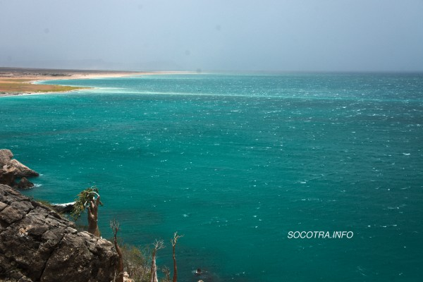 Socotra in summertime