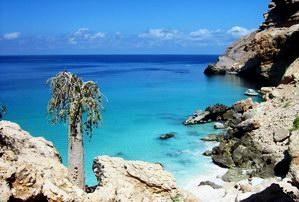 Shuab bay, Socotra island